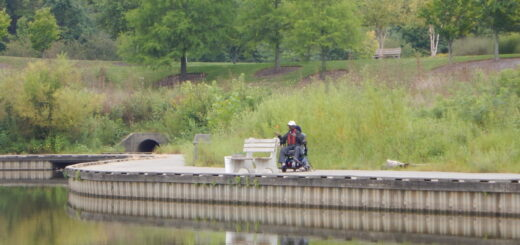 Man seated in wheelchair fishing along the lake.