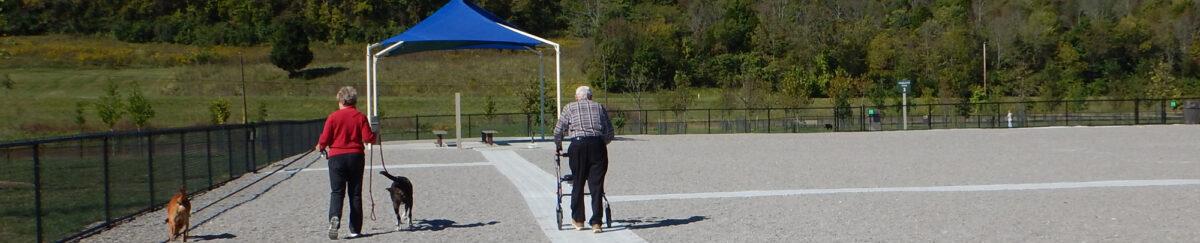 Accessibility Management